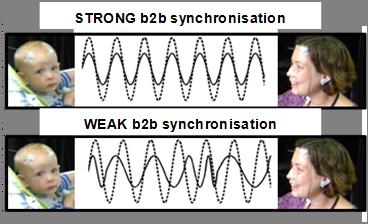 b2bsync